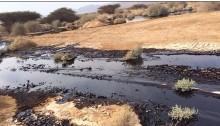Last December's oil spill in the Arava Desert