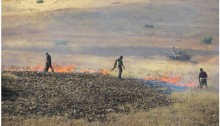 Palestinian farmers make efforts to extinguish fires started during an Israeli military maneuver in the occupied Jordan Valley.