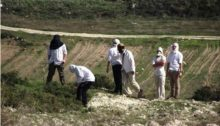 Residents of Havat Gilad preparing to attack Palestinian farmers