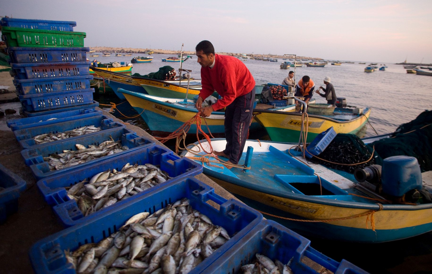 Fishermen in the port of Gaza