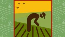 From the cover of the booklet prepared by the Worker's Hotline, Working Safely in Agriculture
